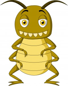 va home loan requirements on a termite or pest inspection